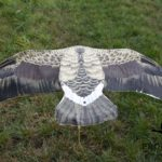 greylag goose decoys windsock with wings