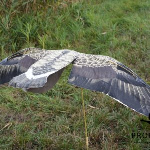 greylag goose decoys Sillosock hypa flapper