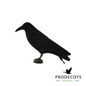 crow decoy full body flocked